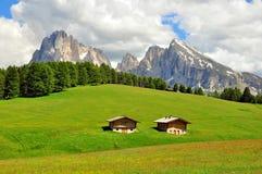 Alpi su estate Immagini Stock Libere da Diritti