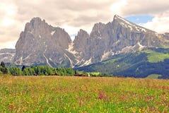 Alpi su estate Immagine Stock