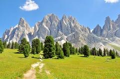 Alpi su estate Fotografie Stock