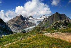 Alpi svizzere Immagini Stock Libere da Diritti