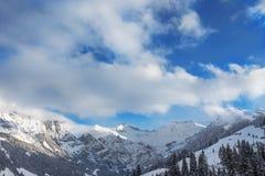 Alpi svizzere a Adelboden, Svizzera Immagini Stock
