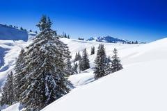 Alpi svizzere coperte da nuova neve fresca veduta dallo sci di Hoch-Ybrig con riferimento a Fotografia Stock Libera da Diritti