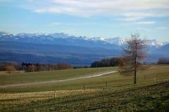 Alpi svizzere dalle colline del Canton Vaud Fotografia Stock