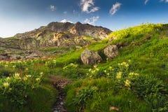 Alpi svizzere, grande St Bernard Immagine Stock