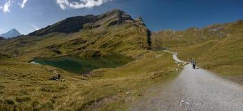 Alpi svizzere - Grindelwald Fotografia Stock Libera da Diritti