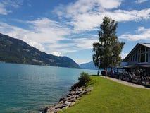 Alpi svizzere Interlaken Fotografia Stock