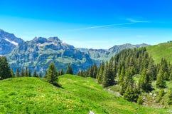 Alpi svizzere nella stagione estiva Panorama del mou pittoresco Fotografie Stock Libere da Diritti
