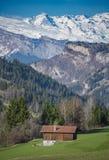 Alpi svizzere pastorali Immagini Stock