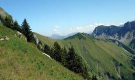 Alpi svizzere prima di estate Fotografia Stock Libera da Diritti