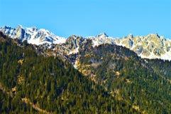 Alpi svizzere in primavera Immagine Stock