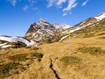 Alpi svizzere - San Bernardino Immagine Stock Libera da Diritti