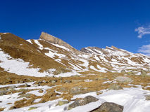 Alpi svizzere - San Bernardino Fotografie Stock