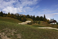 Alpi svizzere - Savognin Immagine Stock Libera da Diritti