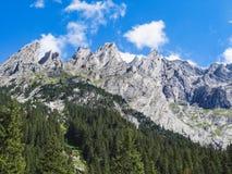 Alpi svizzere stupefacenti Wetterhorn di estate Grindelwald Fotografia Stock