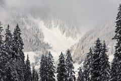 Alpi svizzere vicino a Tavate, Svizzera Immagini Stock