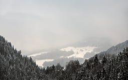 Alpi svizzere vicino a Tavate, Svizzera Immagine Stock