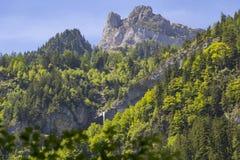 Alpi svizzere viste attraverso foresta in Blausee o nel parco naturale blu del lago di estate, Kandersteg, Svizzera Immagini Stock Libere da Diritti