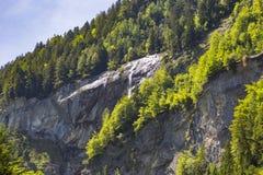 Alpi svizzere viste attraverso foresta in Blausee o nel parco naturale blu del lago, Svizzera Fotografia Stock