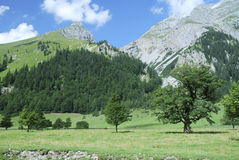 Alpi in Tirol Immagini Stock Libere da Diritti