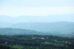 Alpi verdi della sorgente Fotografia Stock