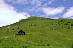 Alpi verdi di Thew dell'Austria Immagini Stock