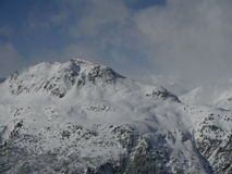 Alpien de berglandschap van Alpen Stock Fotografie