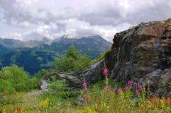 Alpien de zomerlandschap van de berg royalty-vrije stock fotografie