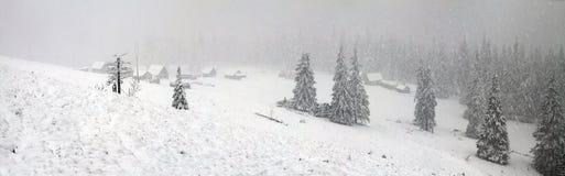 Alpien is het klimaat Stock Foto