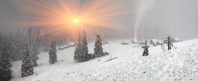 Alpien is het klimaat stock afbeelding