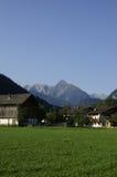 Alpien landbouwbedrijf stock afbeelding
