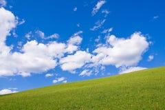 Alpien landbouwbedrijfland stock foto