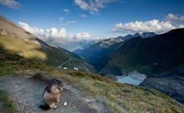 Alpien landschap Royalty-vrije Stock Foto
