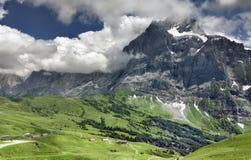 Alpien landschap, Grindelwald (Zwitserland) Stock Afbeelding