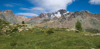 Alpien landschap met lange bergen en weiland in de zomer in Valmalenco Stock Foto