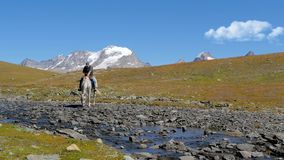 Alpien landschap met ruiter 4K stock videobeelden