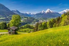 Alpien landschap met traditioneel bergchalet in de zomer royalty-vrije stock afbeeldingen