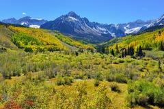 Alpien landschap van gele esp en sneeuw behandelde bergen tijdens gebladerteseizoen Stock Afbeeldingen
