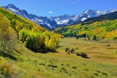 Alpien landschap van gele esp en sneeuw behandelde bergen tijdens gebladerteseizoen Royalty-vrije Stock Foto
