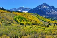 Alpien landschap van gele esp en sneeuw behandelde bergen tijdens gebladerteseizoen Royalty-vrije Stock Fotografie