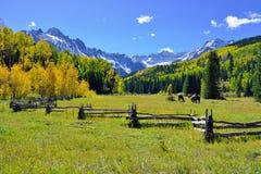 Alpien landschap van gele esp en sneeuw behandelde bergen tijdens gebladerteseizoen Royalty-vrije Stock Afbeeldingen