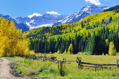 Alpien landschap van gele esp en sneeuw behandelde bergen tijdens gebladerteseizoen Stock Fotografie
