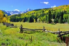 Alpien landschap van gele esp en sneeuw behandelde bergen tijdens gebladerteseizoen Stock Foto