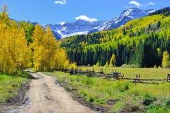Alpien landschap van gele esp en sneeuw behandelde bergen tijdens gebladerteseizoen Royalty-vrije Stock Afbeelding