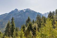 Alpien landschap in Westelijke Carinthia, Oostenrijk Stock Foto