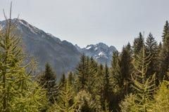 Alpien landschap in Westelijke Carinthia, Oostenrijk Stock Foto's