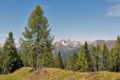 Alpien landschap in Westelijke Carinthia, Oostenrijk Royalty-vrije Stock Afbeeldingen