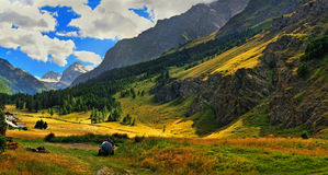 Alpien meadows with golden rays of sun Royalty Free Stock Images