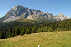 Alpien Panorama Stock Fotografie