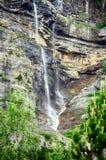 Alpien ril en mountainebos in het Nationale Park van Ordesa Royalty-vrije Stock Afbeeldingen