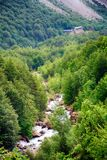 Alpien ril en mountainebos in het Nationale Park van Ordesa Stock Foto's